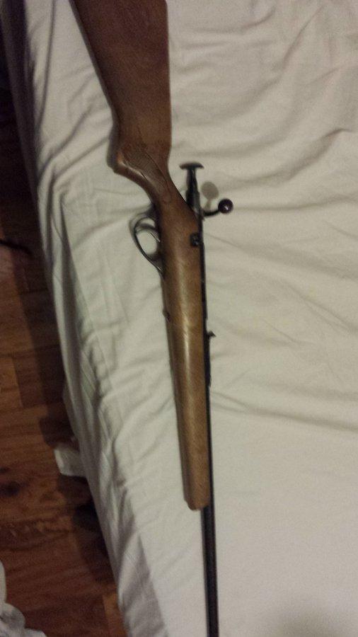 Glenfield Model 10 Cal 22 | Gun Values Board