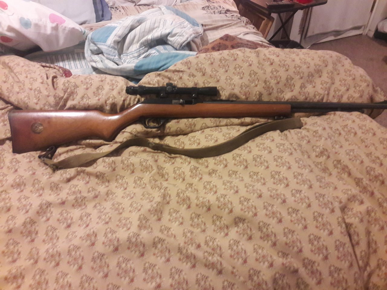 Marlin 22 Model 60w Serial Number 07 3 84454 With A Gold Trigger