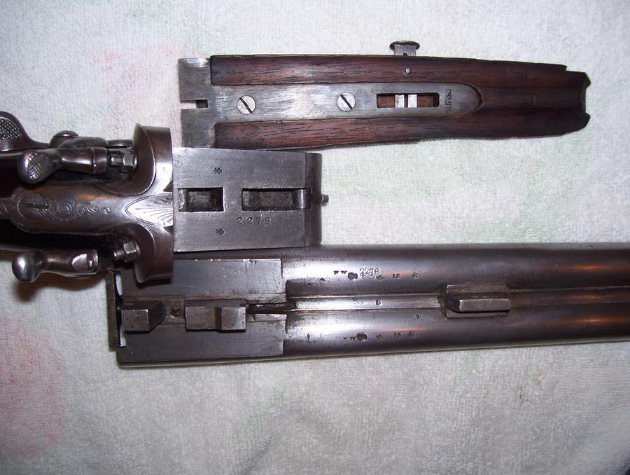 Double Barrel SxS Shotgun Saxton,, English Or Belgian ... 10 Gauge Double Barrel Shotgun