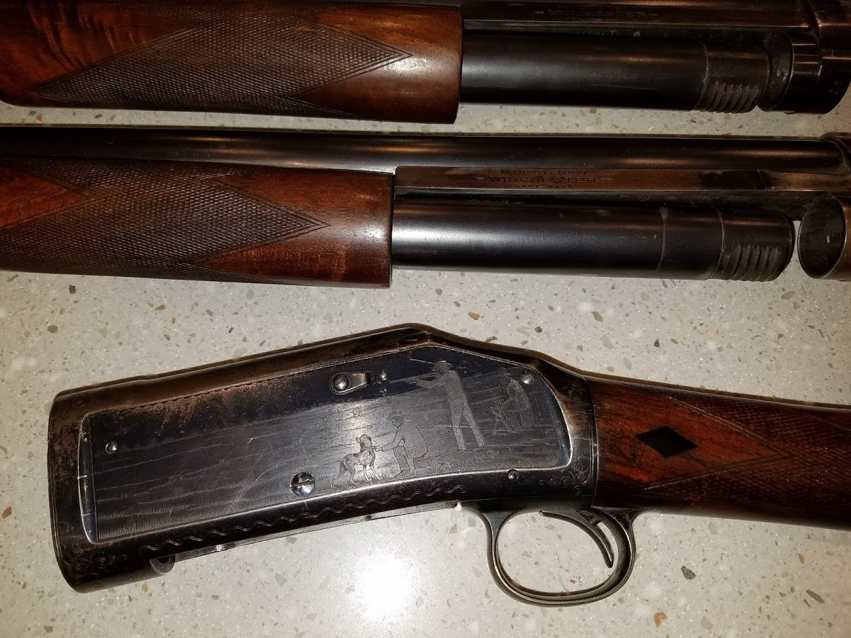 Winchester 1897 Pigeon? | Gun Values Board