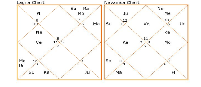 What Would Be His Profession? Two Parivartana Yogas In Chart! | My